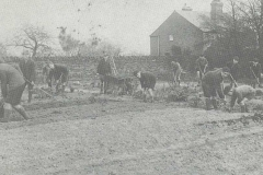 Newburgh-School-Garden-2